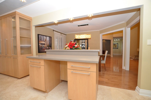 Mississauga Residence Full Home Reno Contemporary Kitchen Toronto By Roma Kitchens