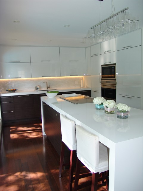 Mississauga Residence contemporary-kitchen