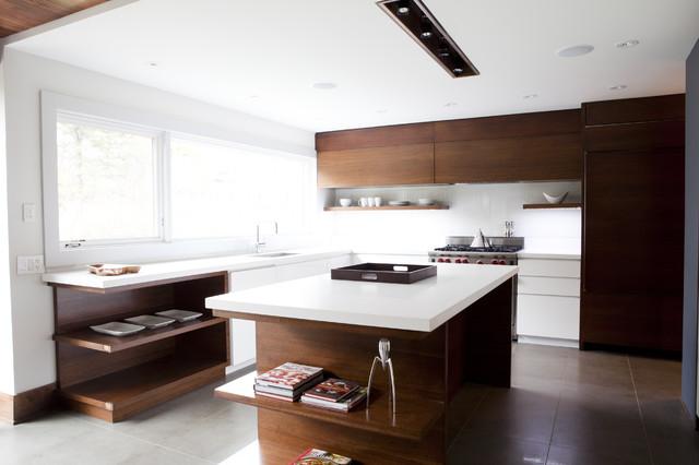 Mod Redux contemporary-kitchen