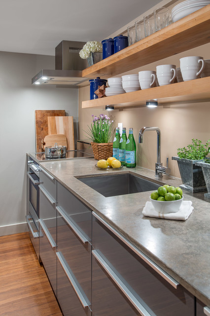 Modern basement apartment kitchen eclectic kitchen toronto by smith and clarke interiors - Cocinas smith ...