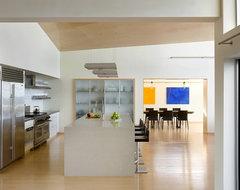 Modern Beach Home Kitchen modern-kitchen