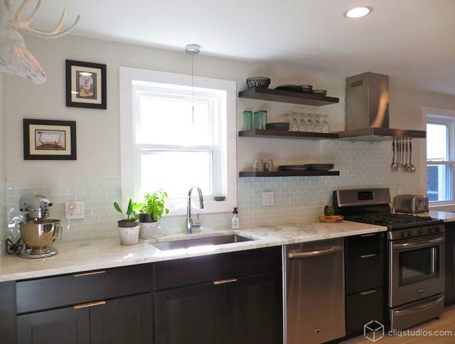 Modern birch sable kitchen update transitional kitchen for Modern kitchen updates