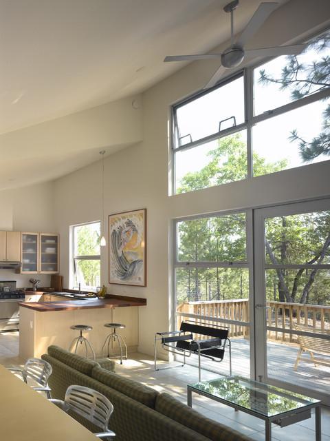 Modern Cabin Interior midcentury-kitchen