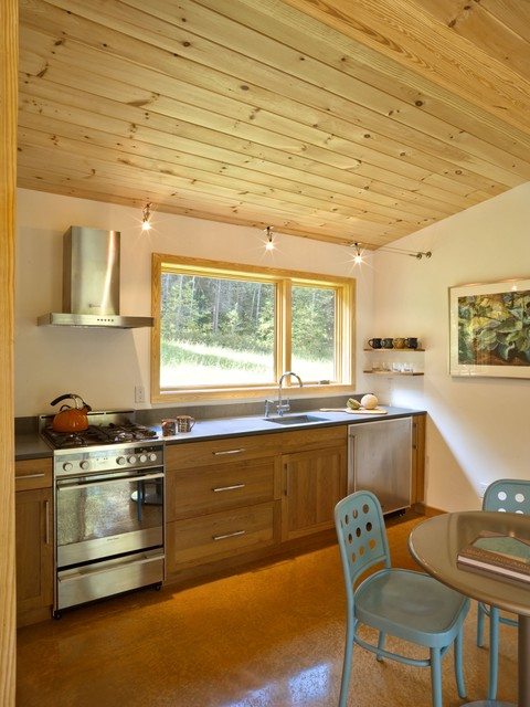 Modern cabin modern kitchen burlington by joan for Kitchen cabinets vermont