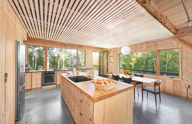 Modern Cabin on the Pond - Rustic - Kitchen - Portland Maine