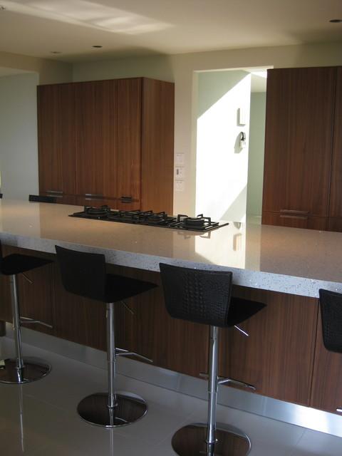 Modern Dream Kitchen modern-kitchen