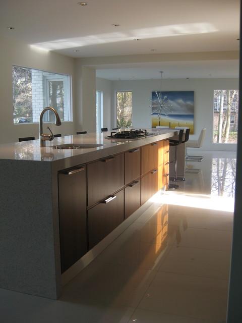 Dream Kitchens Modern modern dream kitchen