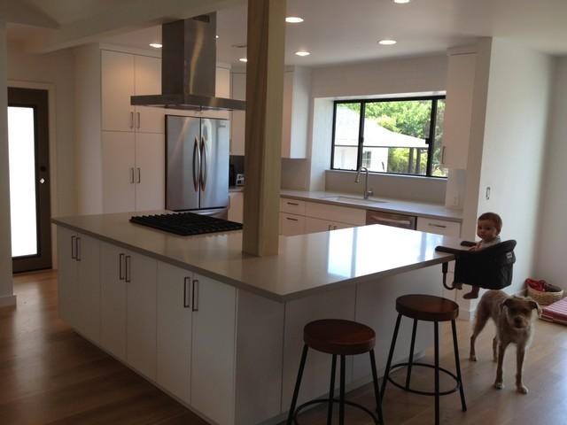 Modern Flat Panel - Modern - Kitchen - los angeles - by Jamie's ...
