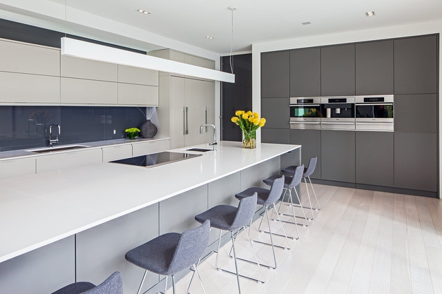 Modern Home in Oakville Ontario scandinavian-kitchen