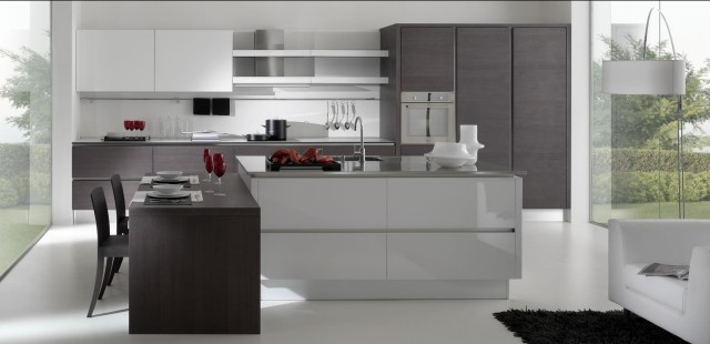 Delicieux Modern Kitchen Cabinets Modern Kitchen