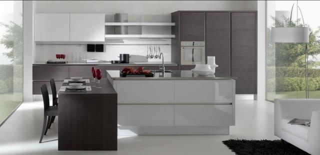 Modern kitchen cabinets modern kitchen los angeles by euro interior california for Kitchen designer los angeles