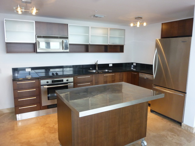 Modern kitchen cabinets for Kitchen cabinets houzz