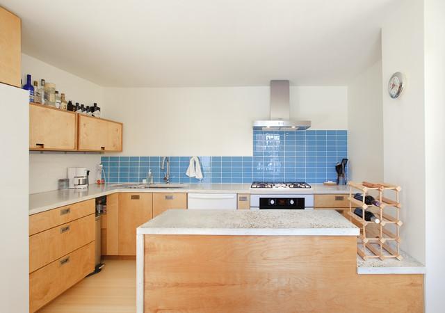 Fulton Street modern-kitchen