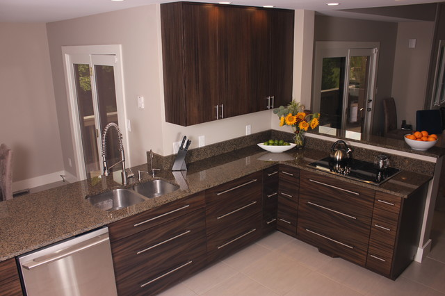 Modern kitchen in ebonized mahogany modern kitchen for Mahogany kitchen designs