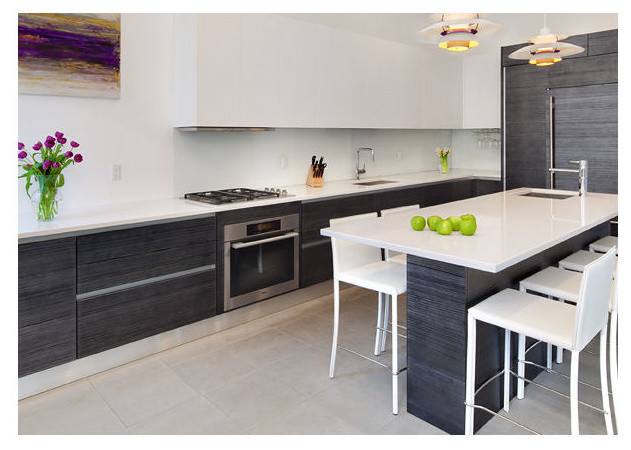 Modern kitchen in Hoboken, NJ contemporary-kitchen