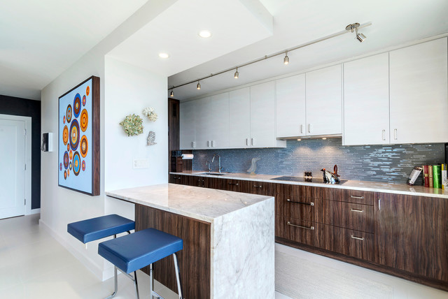 Chicago North Shore Condo Modern Kitchen Chicago By Neff Of Chicago Custom Cabinetry And