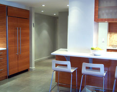 lincoln towers modern kitchen