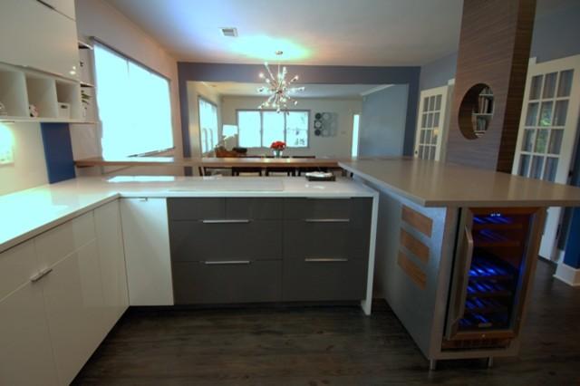 Modern Kitchen Remodel contemporary-kitchen