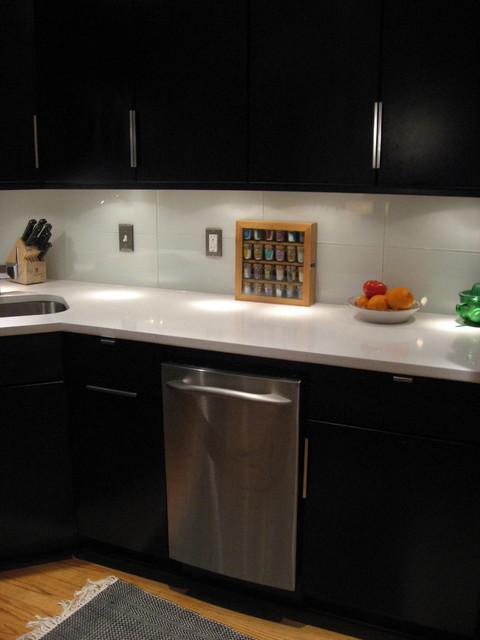 Modern Kitchen Renovation contemporary-kitchen