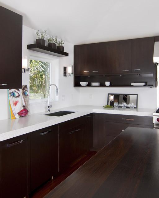 Modern kitchen: Simplicity contemporary-kitchen