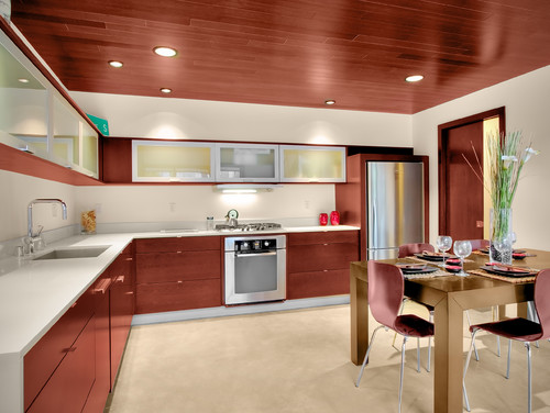 Pb Elemental modern kitchen