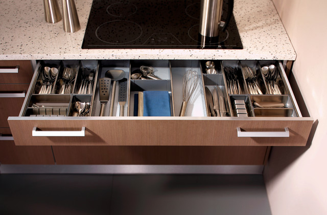 Low Drawer with Cutlery Divider System - Modern - Kitchen - toronto - by SVEA KITCHENS