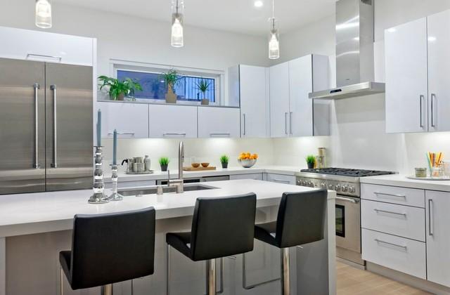 Modern kitchen -Venice contemporary-kitchen
