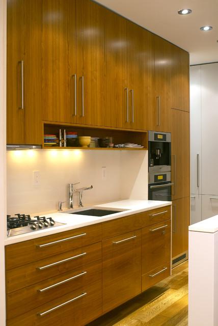 Modern Small Kitchen modern-kitchen
