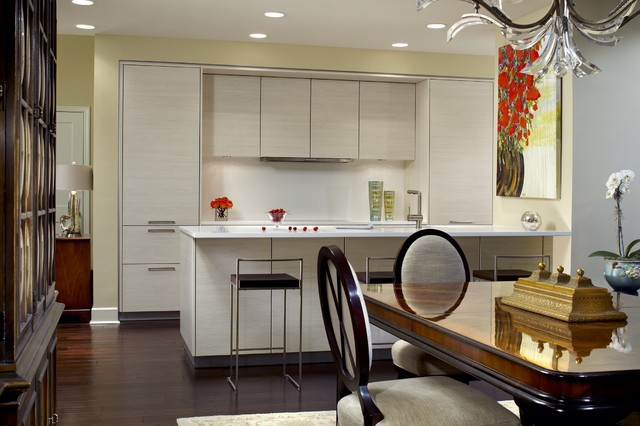 Modern kitchens in traditional homes contemporary-kitchen