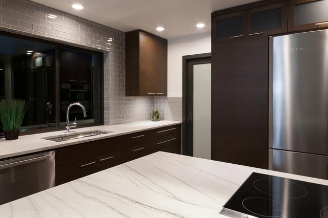Modern Luxury at 102 16th Ave Kirkland modern-kitchen