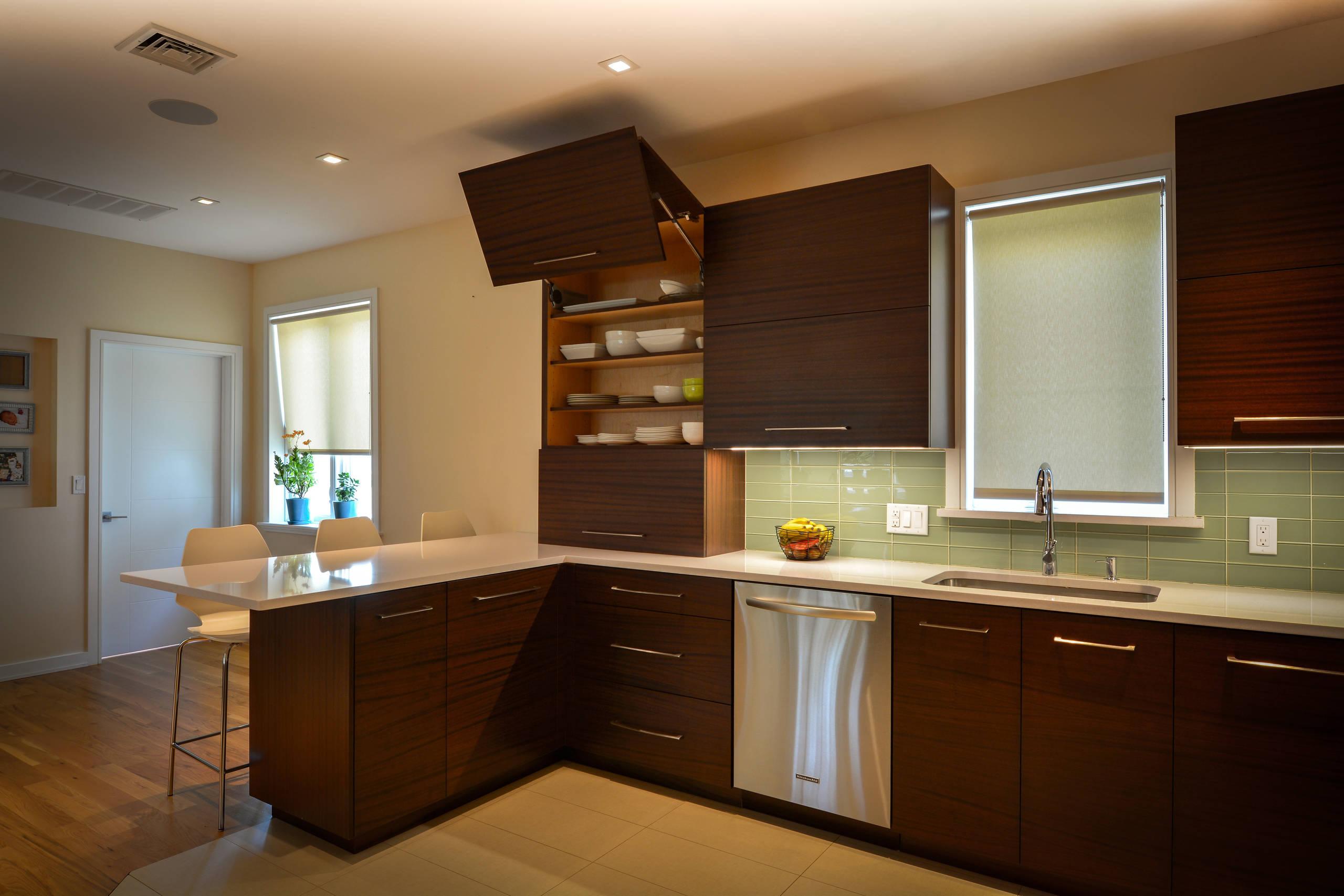 Modern mahogeny  kitchen