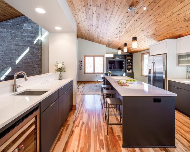 Modern Minneapolis Ranch Contemporary Kitchen