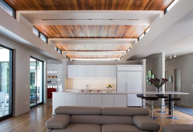 Modern Oak Hill Residence modern-kitchen