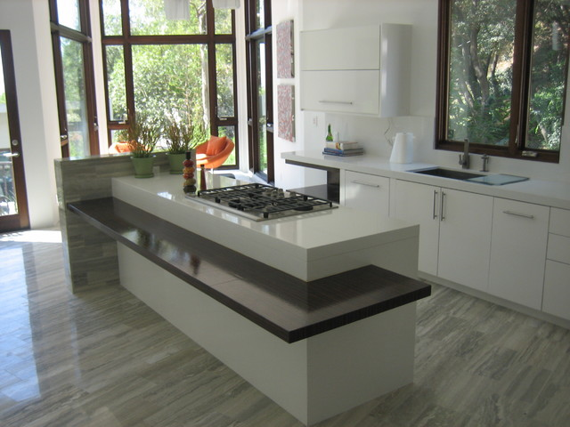 Modern Oasis modern kitchen