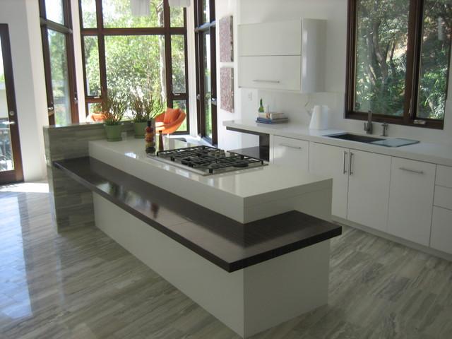 Modern Oasis modern-kitchen