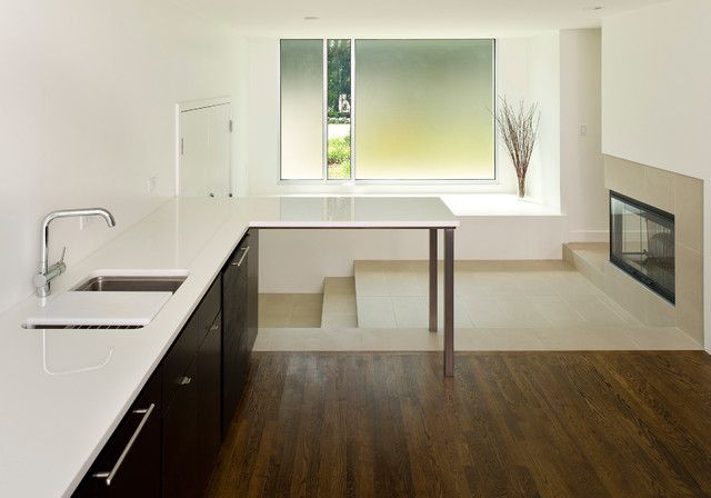 Sudbury Residence contemporary-kitchen