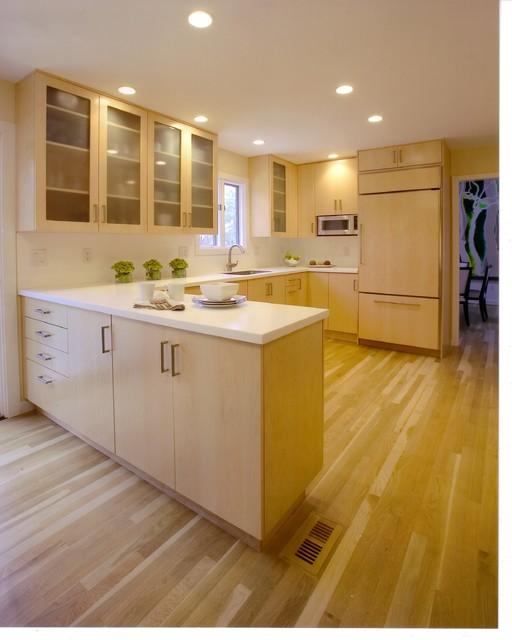 Modern Style Cabinets kitchen-cabinets
