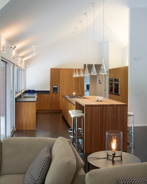 Modern w/ a Side of Ranch modern-kitchen