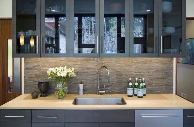 Modernist Kitchen Renovation Modern Kitchen