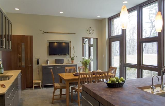 Modernist Kitchen Renovation modern-kitchen