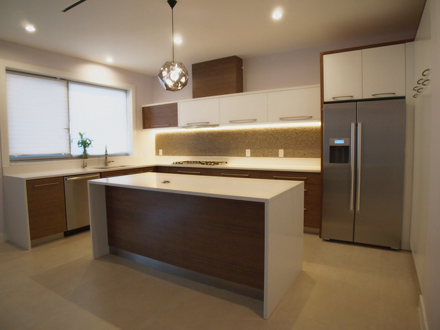 modhome contemporary-kitchen
