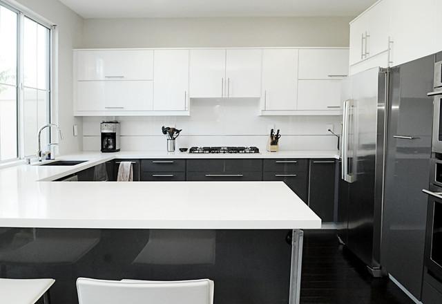 Monarch Beach Modern Kitchen Orange County By Susan Thiel Design