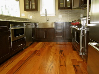 Montague Renovation - Contemporary - Kitchen - DC Metro - by Cleo~Caryae Designs