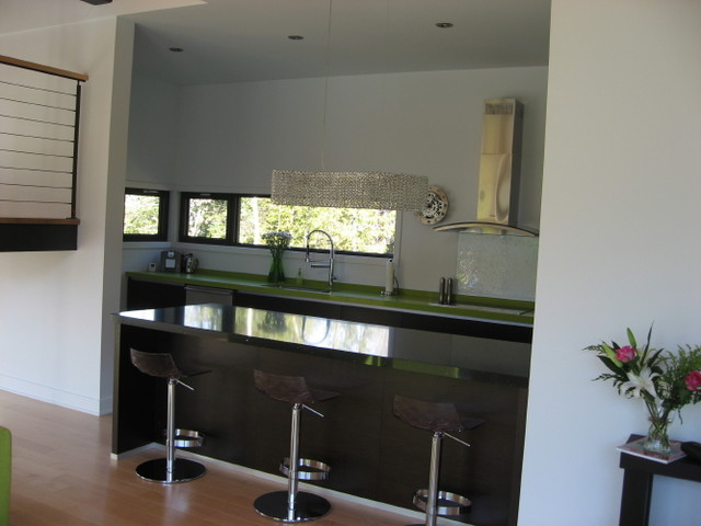 Morency Lake contemporary-kitchen