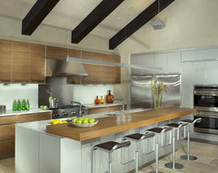 Morning Star Residence contemporary-kitchen
