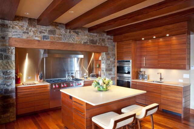 Mountain Contemporary Cabin contemporary-kitchen