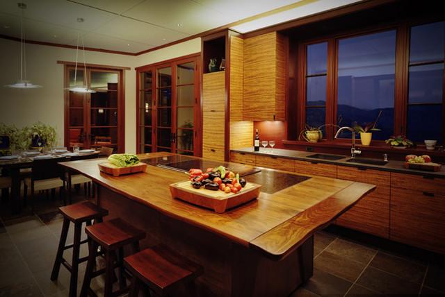 Mountain Modern contemporary-kitchen