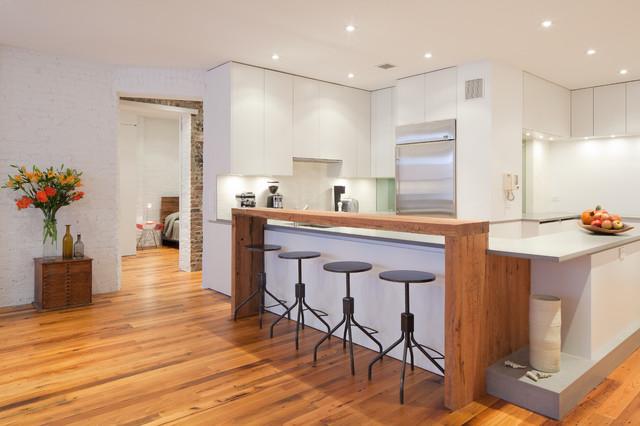 Munter Residence contemporary-kitchen