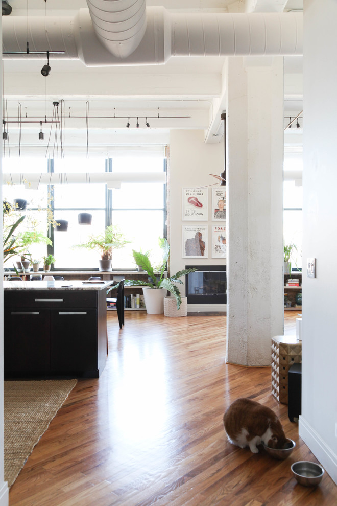 My Houzz: A Restaurateur's Lush and Luxe Chicago Loft ...