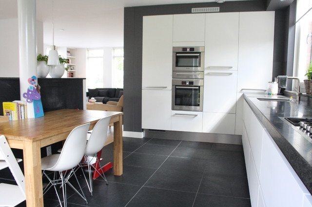 my houzz contemporary clasic in the netherlands contemporary